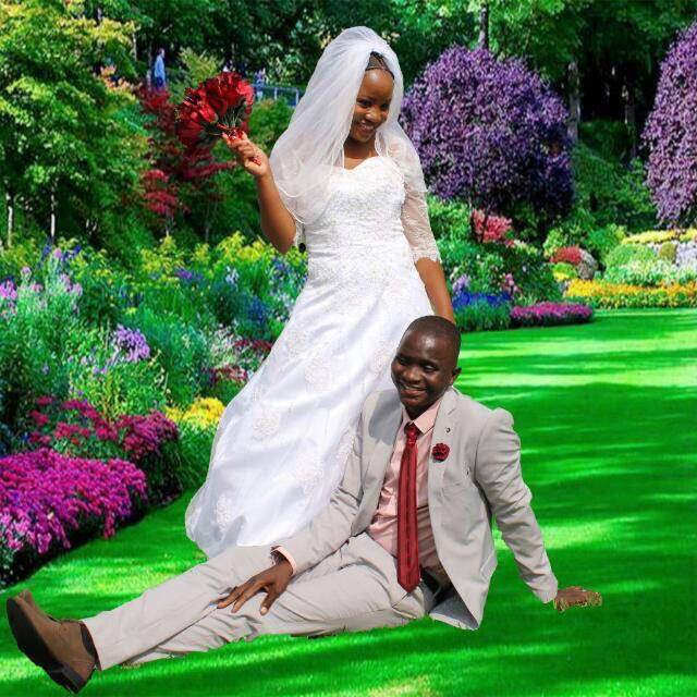Wedding Dresses For Sale And Hire
