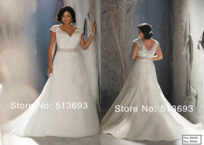 P  Distinctive Design V-neck Crystals Short Sleeves Plus Size Wedding Dress Lace